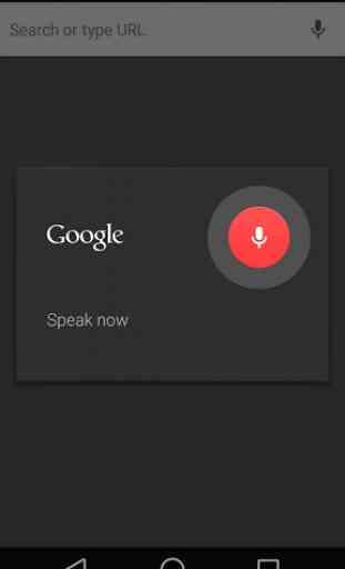 Navigateur GoogleChrome 2