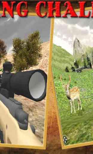 Safari Cerf Chasse Afrique 4