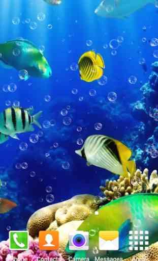 L Aquarium Fond D Ecran Application Android Allbestapps