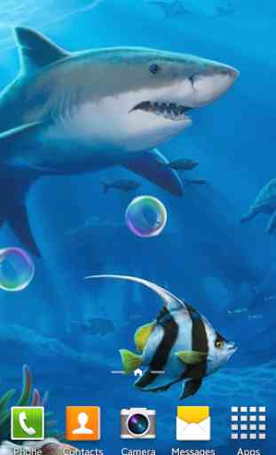 Requins Fond D écran Animé Application Android Allbestapps