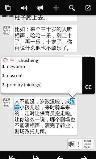Pleco Chinese Dictionary 4