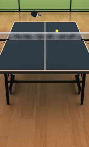 Virtual Table Tennis 1