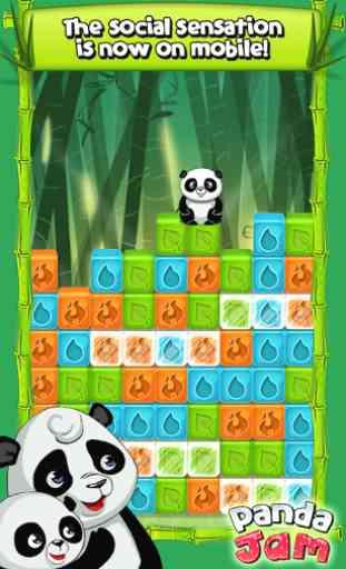 Panda Jam 1
