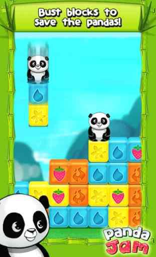 Panda Jam 2