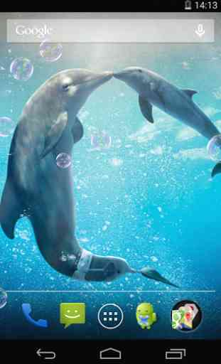 Fond D Ecran Anime Dauphins Application Android Allbestapps