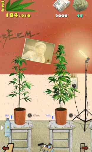 Weed Firm: RePlanted 2