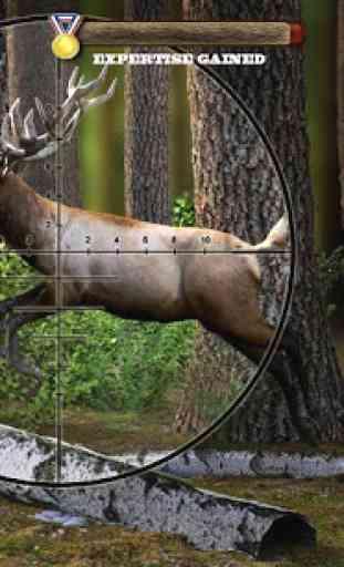 Kill the Deer 1