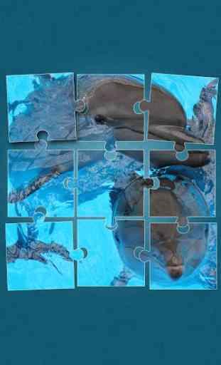 Dauphin Jeux de puzzle 1