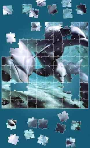 Dauphin Jeux de puzzle 2