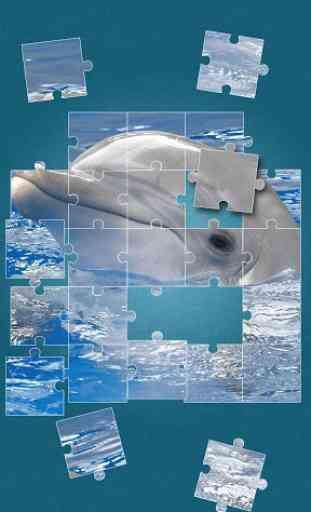 Dauphin Jeux de puzzle 4
