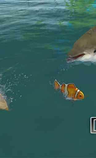 Dolphin réel Simulator 1