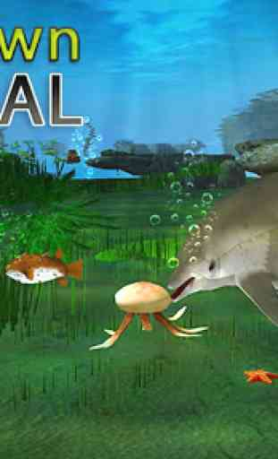 Dolphin réel Simulator 2