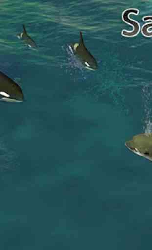 Dolphin réel Simulator 4