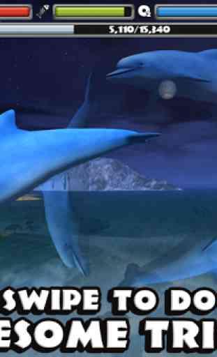 Dolphin Simulator 3
