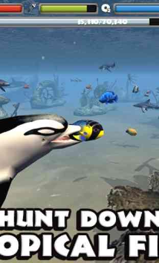 Dolphin Simulator 4