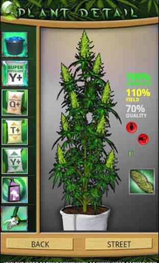 Weed Farmer Overgrown 1