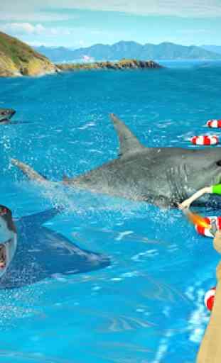 Shark Chasse Deep Dive 2 2