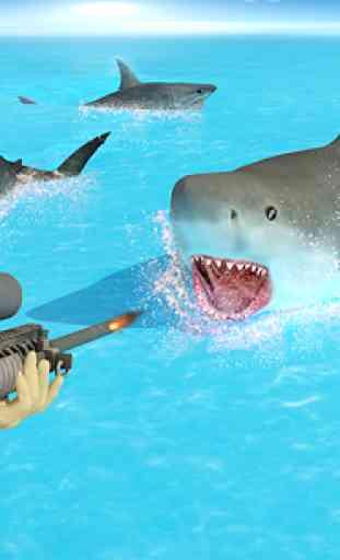 Shark Chasse Deep Dive 2 4