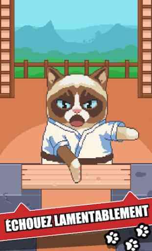 Grumpy Cat: Un jeu affreux 3