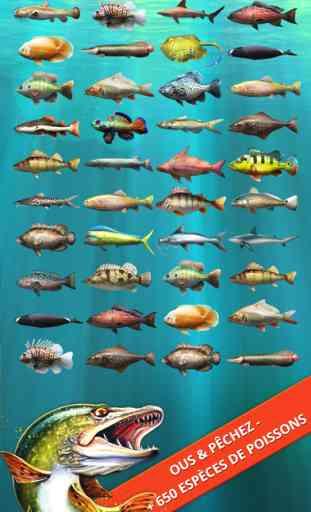 Let's Fish: Jeux de Pêche Gratuit. Fish Games 3